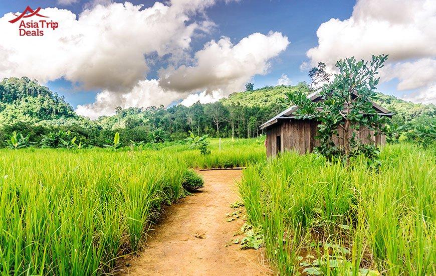 Budung village, Cambodia