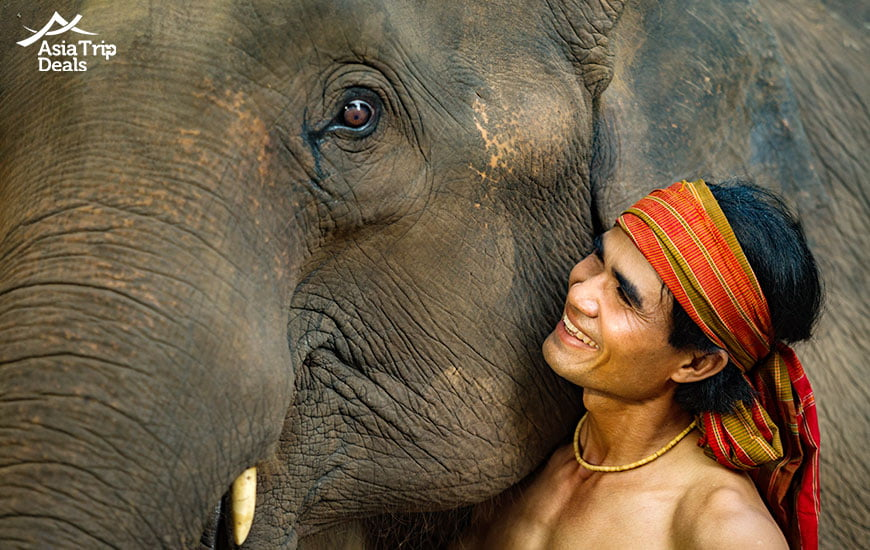 A Mahout with his elephant