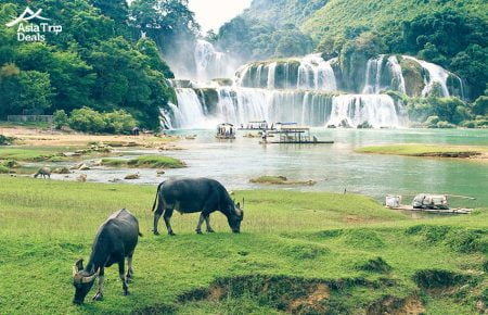 Vietnam For Wildlife and Nature Lovers