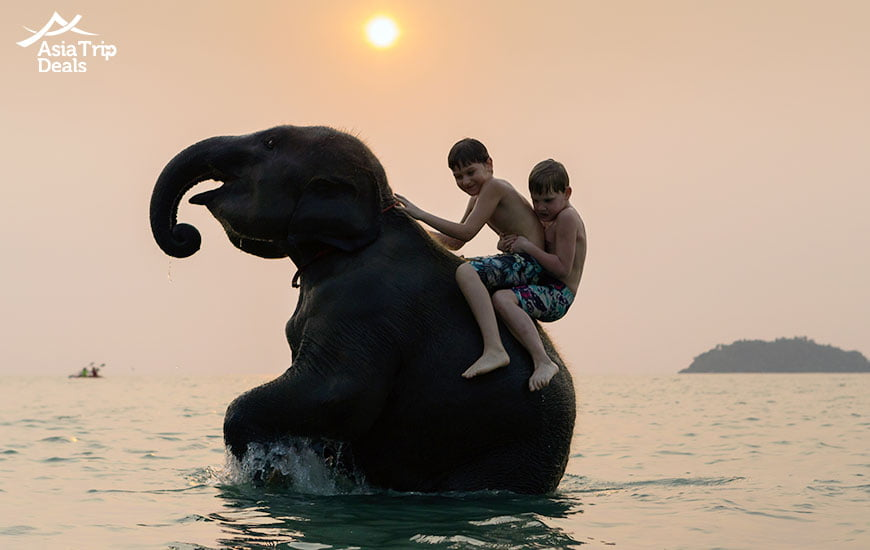 Kids playing with an elephant on Koh Chang island in Thailand