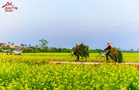 Hoi An – Biking to Farms
