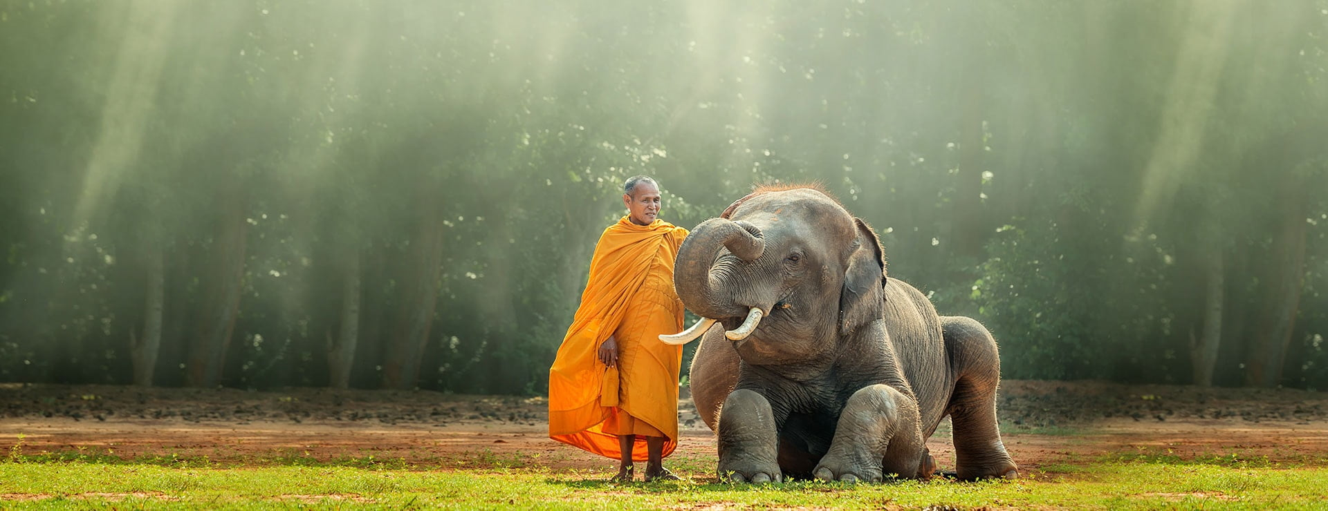 Monk and baby elephant in Cambodia