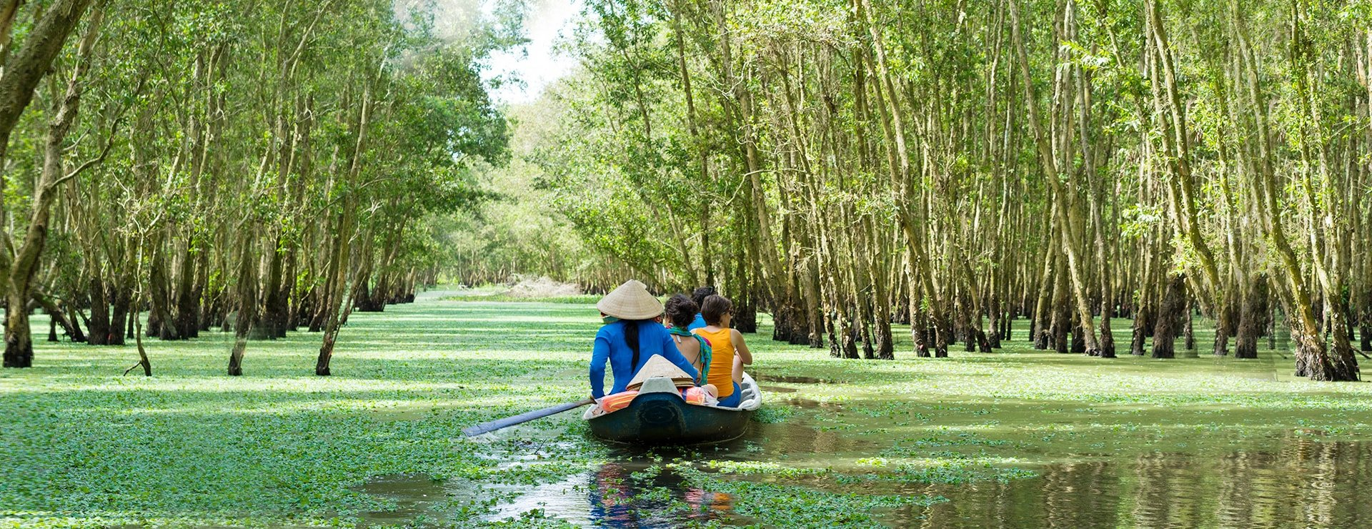 Tourism rowing boat in Tra Su flooded indigo plant forest in An Giang,  Mekong delta, Vietnam copy – Asia Trip Deals