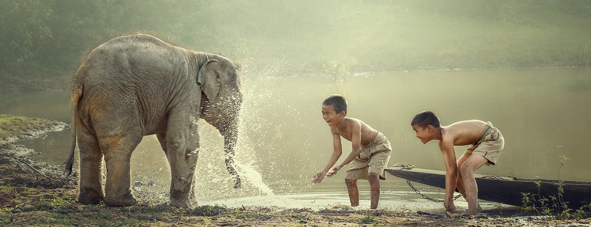 Boys playing with elephant in Cambodia
