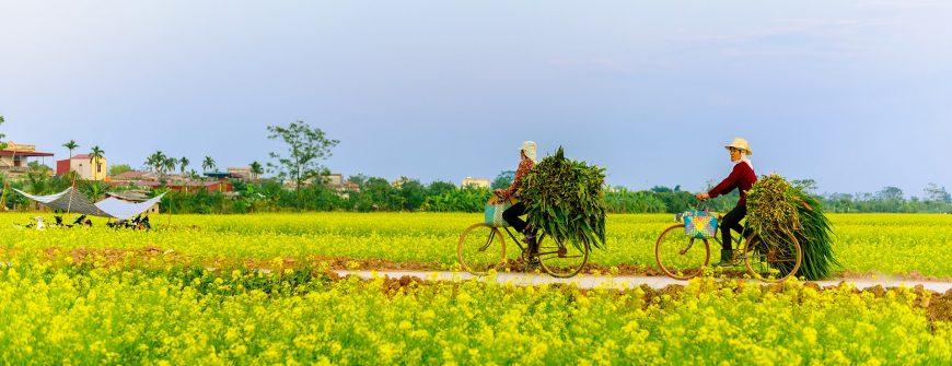 destinations in vietnam for great outdoor adventures