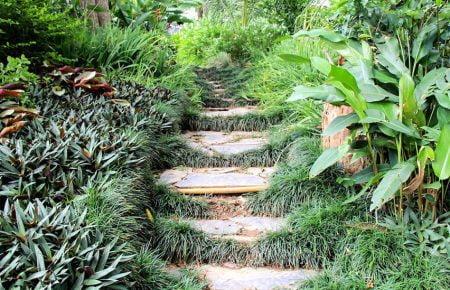 Luang Prabang – Pha Tad Ke Garden